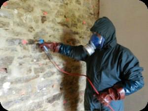 Traitement du champignon la m rule et humidit - Champignons sur les murs interieurs ...
